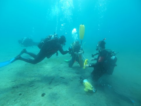 2014 scientific diving1